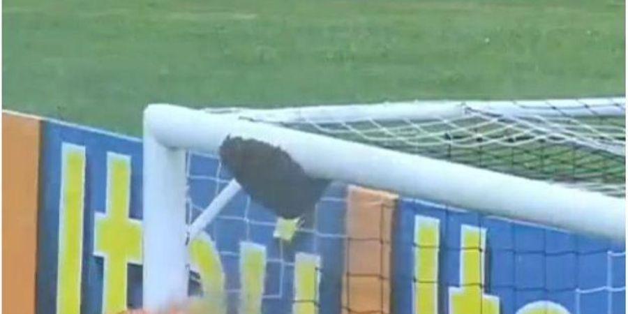 Un essaim marque dans une cage de foot