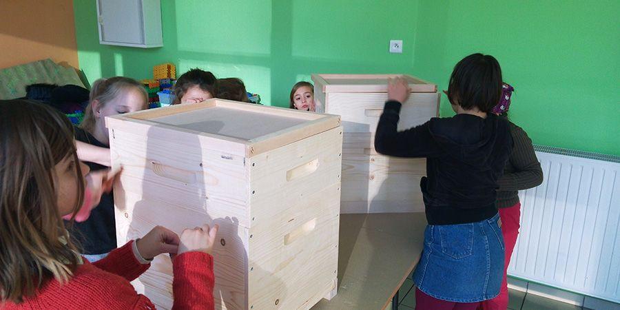 Montage des ruche en kit
