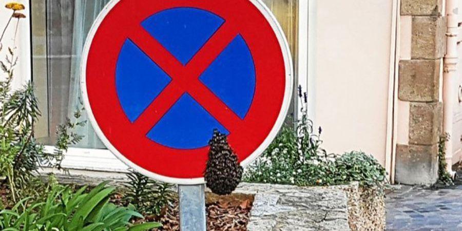 Stationnement interdit pour cet essaim
